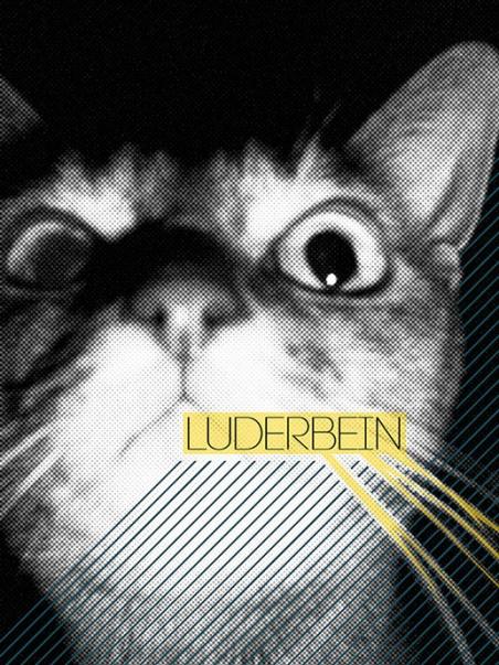http://www.silvio-thamm.de/files/gimgs/th-14_Luderbein (2009).jpg